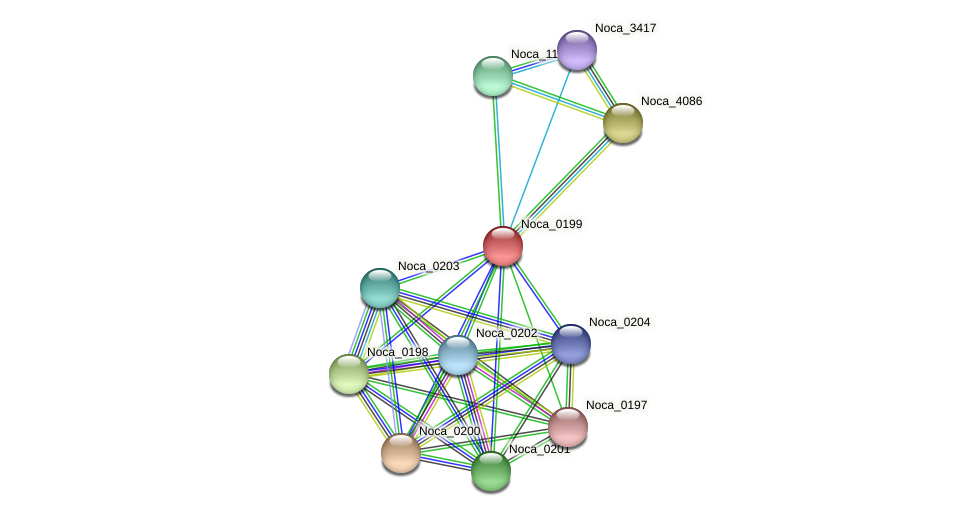 Noca_0199 protein (Nocardioides sp. JS614) - STRING interaction network