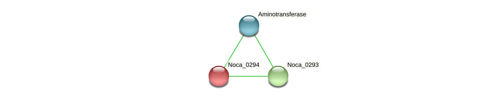 Noca_0294 protein (Nocardioides sp. JS614) - STRING interaction network