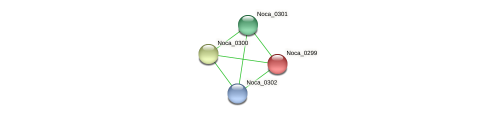 Noca_0299 protein (Nocardioides sp. JS614) - STRING interaction network