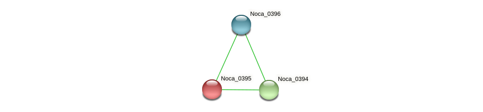 Noca_0395 protein (Nocardioides sp. JS614) - STRING interaction network