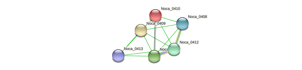 Noca_0410 protein (Nocardioides sp. JS614) - STRING interaction network