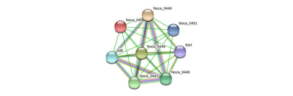 Noca_0450 protein (Nocardioides sp. JS614) - STRING interaction network