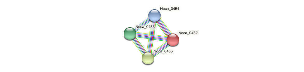 Noca_0452 protein (Nocardioides sp. JS614) - STRING interaction network
