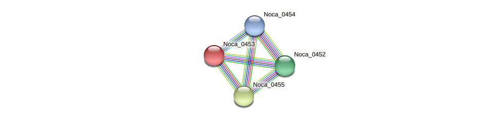 Noca_0453 protein (Nocardioides sp. JS614) - STRING interaction network