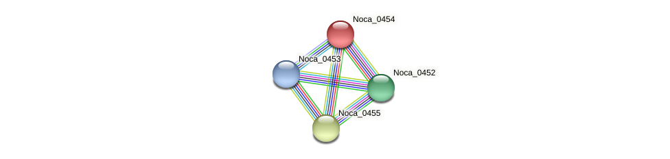 Noca_0454 protein (Nocardioides sp. JS614) - STRING interaction network