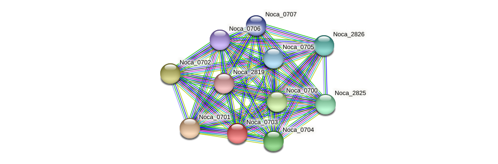 Noca_0703 protein (Nocardioides sp. JS614) - STRING interaction network