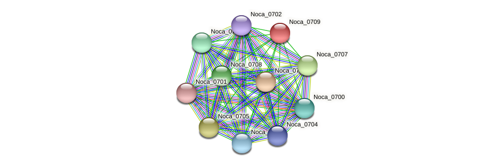 Noca_0709 protein (Nocardioides sp. JS614) - STRING interaction network
