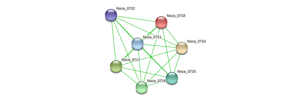 Noca_0718 protein (Nocardioides sp. JS614) - STRING interaction network