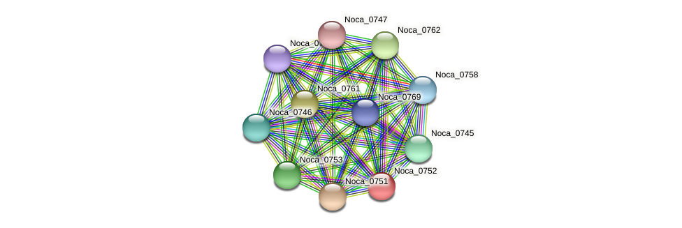 Noca_0752 protein (Nocardioides sp. JS614) - STRING interaction network