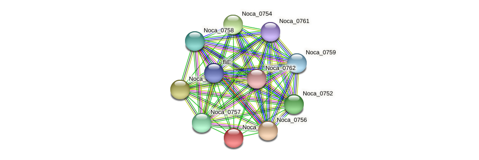 Noca_0755 protein (Nocardioides sp. JS614) - STRING interaction network