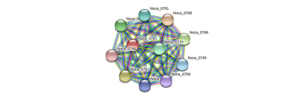 Noca_0767 protein (Nocardioides sp. JS614) - STRING interaction network