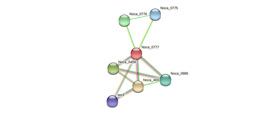 Noca_0777 protein (Nocardioides sp. JS614) - STRING interaction network