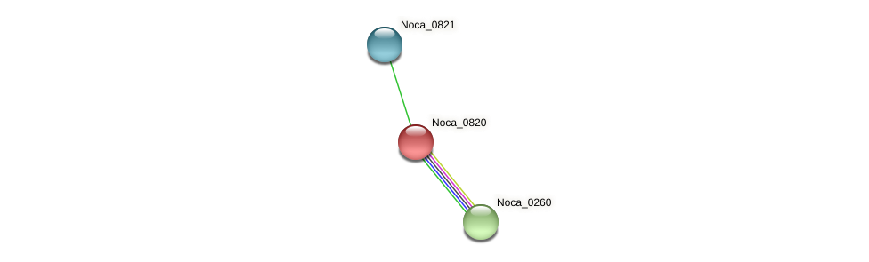 Noca_0820 protein (Nocardioides sp. JS614) - STRING interaction network
