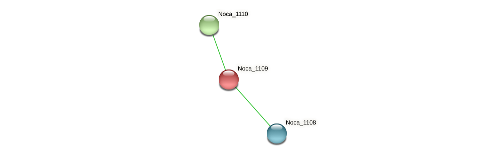 Noca_1109 protein (Nocardioides sp. JS614) - STRING interaction network