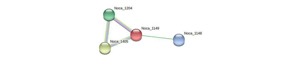 Noca_1149 protein (Nocardioides sp. JS614) - STRING interaction network