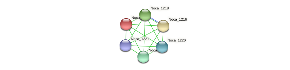Noca_1217 protein (Nocardioides sp. JS614) - STRING interaction network