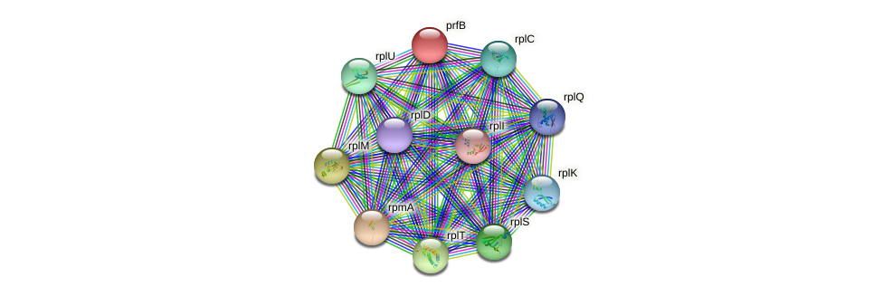 prfB protein (Nocardioides sp. JS614) - STRING interaction network