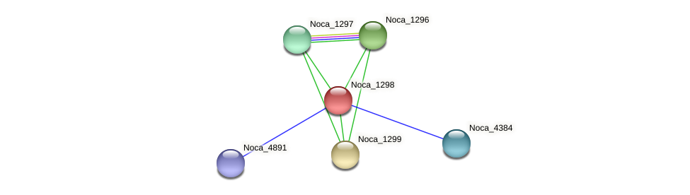 Noca_1298 protein (Nocardioides sp. JS614) - STRING interaction network