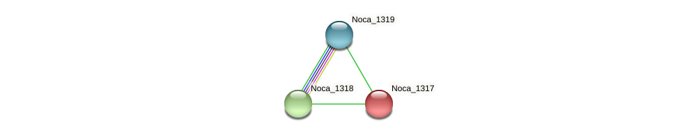 Noca_1317 protein (Nocardioides sp. JS614) - STRING interaction network