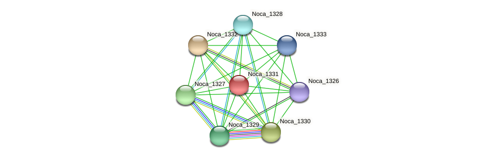 Noca_1331 protein (Nocardioides sp. JS614) - STRING interaction network