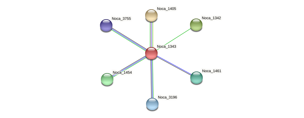 Noca_1343 protein (Nocardioides sp. JS614) - STRING interaction network