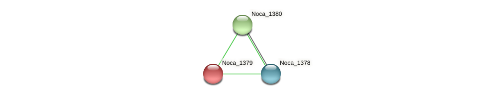 Noca_1379 protein (Nocardioides sp. JS614) - STRING interaction network