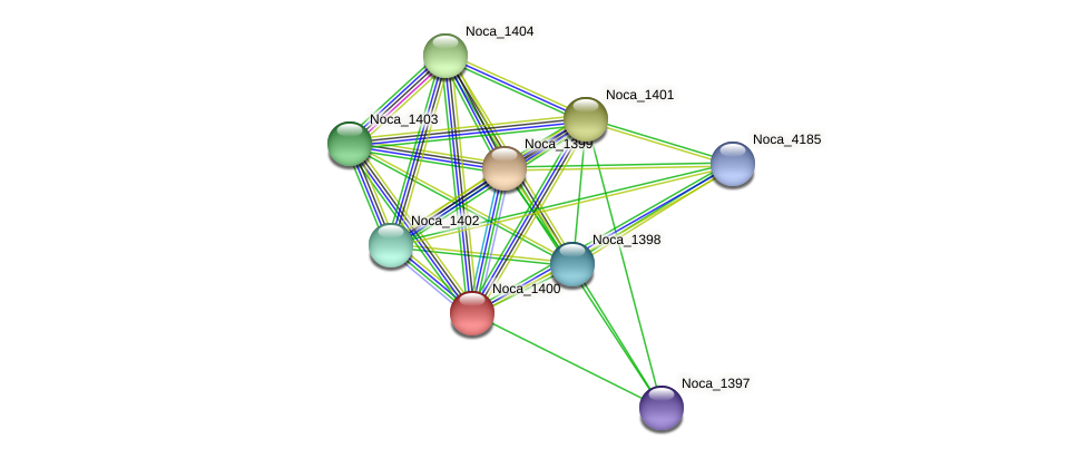 Noca_1400 protein (Nocardioides sp. JS614) - STRING interaction network