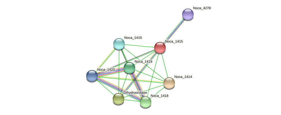 Noca_1415 protein (Nocardioides sp. JS614) - STRING interaction network
