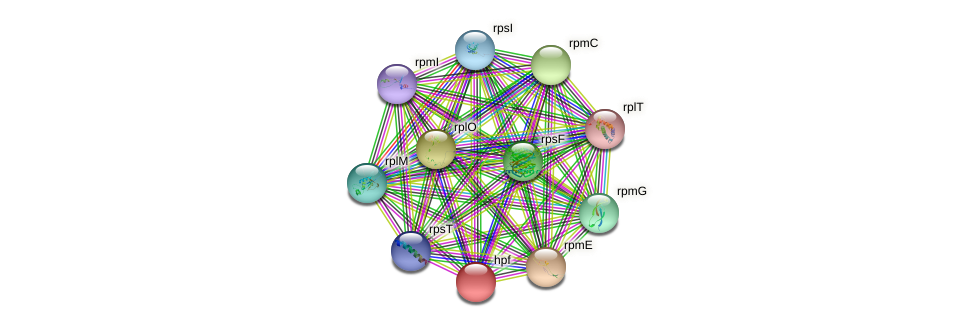 Noca_1437 protein (Nocardioides sp. JS614) - STRING interaction network