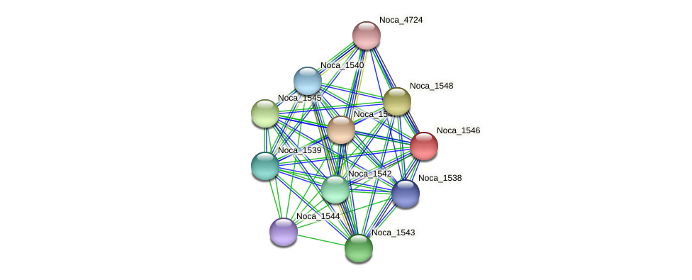 Noca_1546 protein (Nocardioides sp. JS614) - STRING interaction network