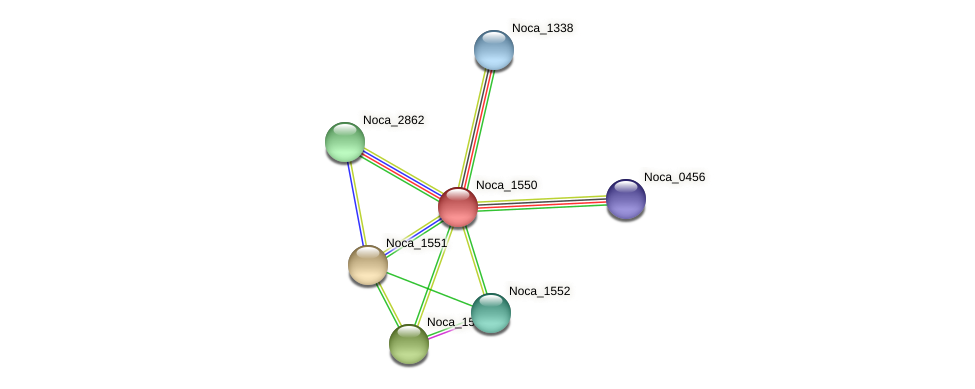 Noca_1550 protein (Nocardioides sp. JS614) - STRING interaction network