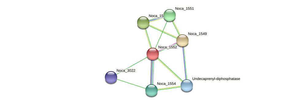 Noca_1552 protein (Nocardioides sp. JS614) - STRING interaction network