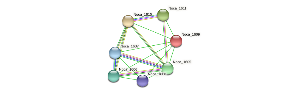 Noca_1609 protein (Nocardioides sp. JS614) - STRING interaction network