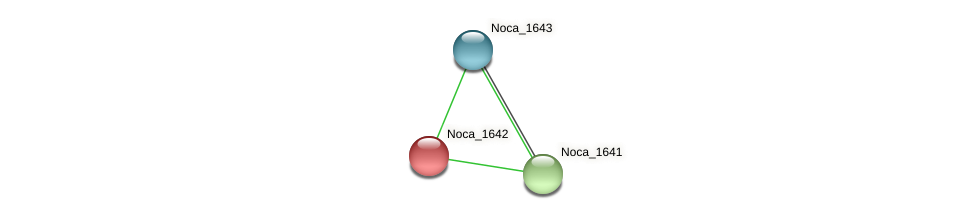 Noca_1642 protein (Nocardioides sp. JS614) - STRING interaction network