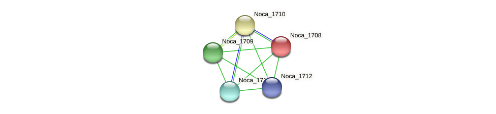 Noca_1708 protein (Nocardioides sp. JS614) - STRING interaction network