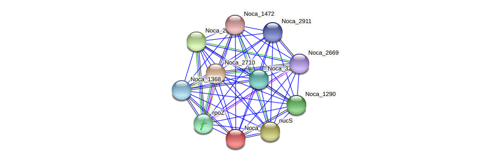 Noca_1713 protein (Nocardioides sp. JS614) - STRING interaction network