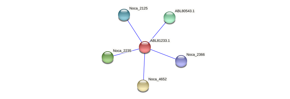 Noca_1720 protein (Nocardioides sp. JS614) - STRING interaction network