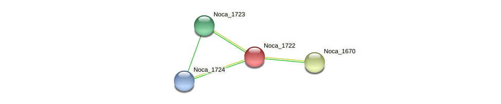 Noca_1722 protein (Nocardioides sp. JS614) - STRING interaction network