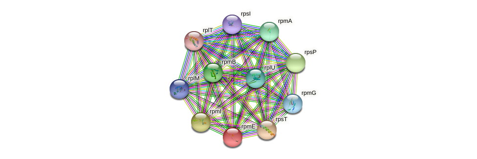 rpmE protein (Nocardioides sp. JS614) - STRING interaction network