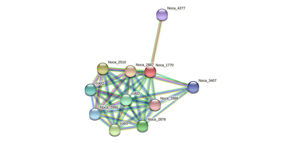Noca_1770 protein (Nocardioides sp. JS614) - STRING interaction network