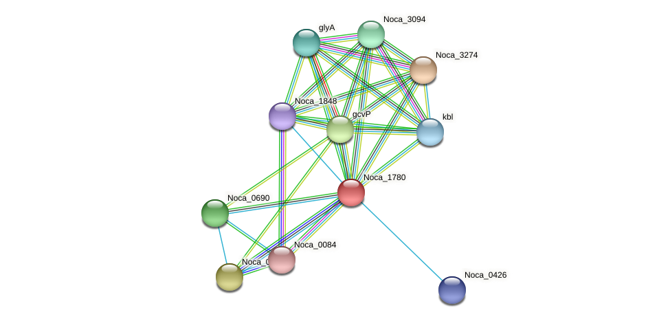 Noca_1780 protein (Nocardioides sp. JS614) - STRING interaction network