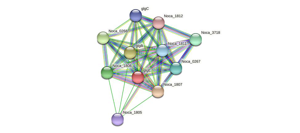 glgE protein (Nocardioides sp. JS614) - STRING interaction network