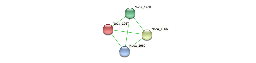 Noca_1967 protein (Nocardioides sp. JS614) - STRING interaction network