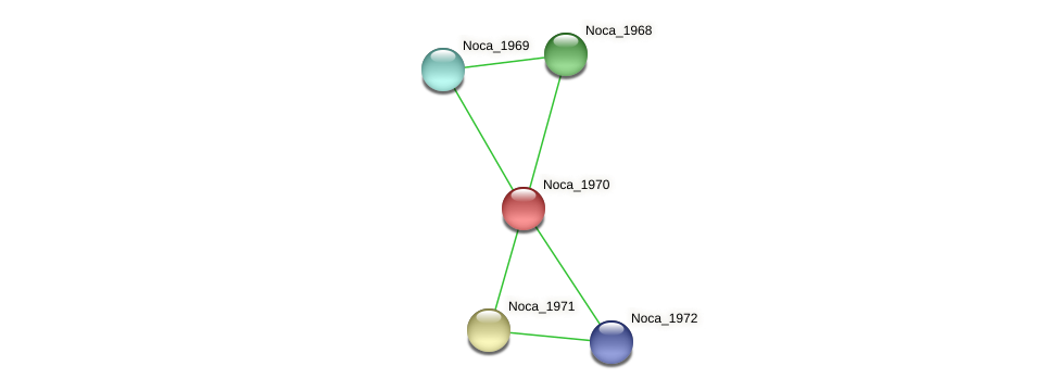 Noca_1970 protein (Nocardioides sp. JS614) - STRING interaction network