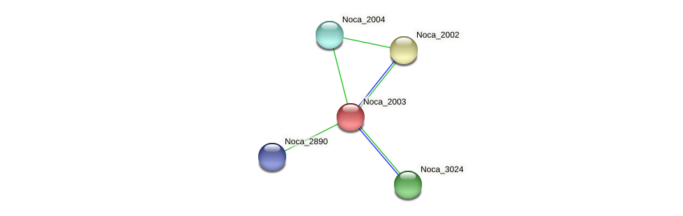 Noca_2003 protein (Nocardioides sp. JS614) - STRING interaction network