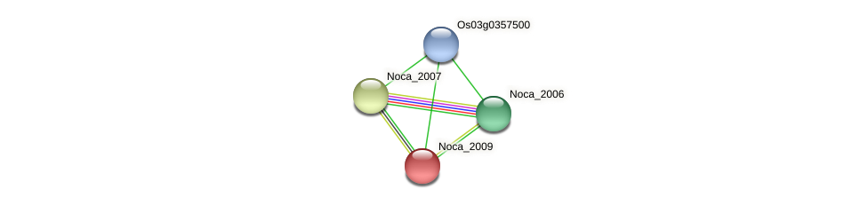 Noca_2009 protein (Nocardioides sp. JS614) - STRING interaction network