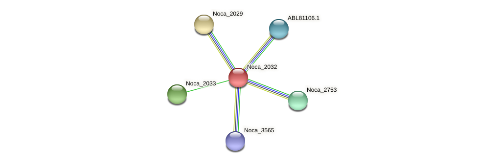 Noca_2032 protein (Nocardioides sp. JS614) - STRING interaction network