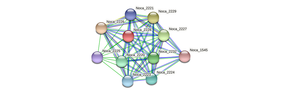 Noca_2228 protein (Nocardioides sp. JS614) - STRING interaction network