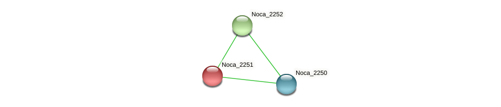 Noca_2251 protein (Nocardioides sp. JS614) - STRING interaction network