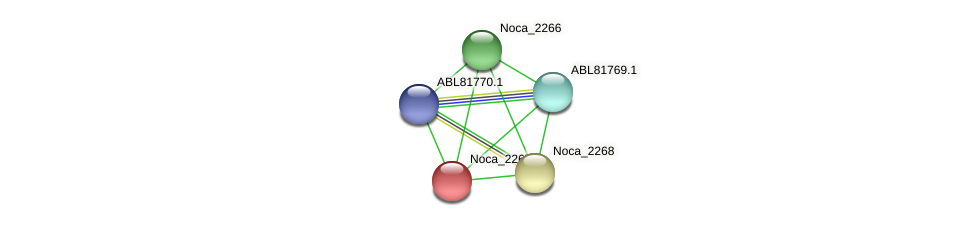 Noca_2267 protein (Nocardioides sp. JS614) - STRING interaction network